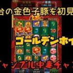 【カジノゲーム】(ゴールデンホイヤー) 人気台の金色子豚を初見打ち!【スマホゲーム】【長者への道】 (Golden Ho Yeah)