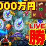 【オンラインカジノ】魚と犬に50000円勝負じゃ!【1xBETノニコム】