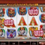【オンラインカジノ】Kitty Cabana dashing wild