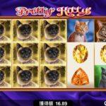 【オンラインカジノ】Pretty Kitty expanding symbols