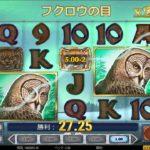 【オンラインカジノ】Wild North freespin Owl