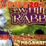オンラインcasino【White Rabbit】登録20人達成 10万円企画