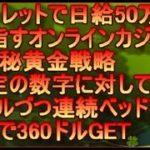ルーレットで日給50万円を目指すオンラインカジノ マル秘黄金戦略  特定の数字に対して1ドルづつ連続ベッドで2分で360ドルGETの巻