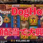 【オンラインカジノ/オンカジ】【レオベガス】The Dog House MEGAWAYS高額配当!!