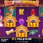 ギャンボラ オンカジ スロット爆発 THE DOG HOUSE #14
