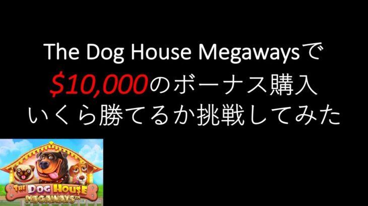 【オンラインカジノ】The Dog House Megawaysで100万円ぶっ込んでみた結果がこれ。