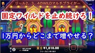 【オンラインカジノ】1万円からどこまで増やせる?固定ワイルドを止め続けろ!【The DOG HOUSE】