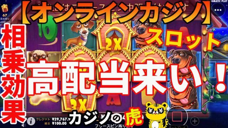 #242【オンラインカジノ スロット】相乗効果の高配当来い! THE DOG HOUSE