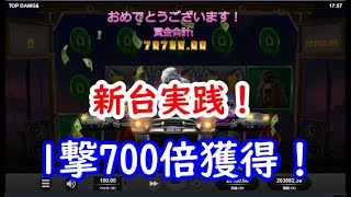 【オンラインカジノ】新台実践!固定ワイルド&マルチプライヤーで勝利をつかめ!【TOP DAWGS】